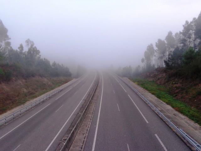 Туман / Fog