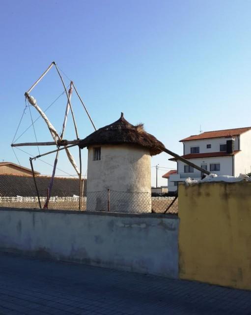 Мельницы и круглые дома / А mill and folk round houses